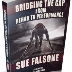 Sue Falsone Bridging the Gap